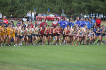 cross country race start